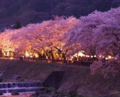 箱根温泉の魅力のイメージ画蔵