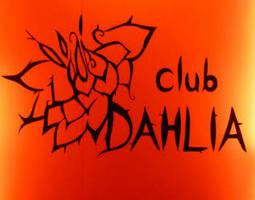 銀座クラブ、ダリアdahliaの店内1
