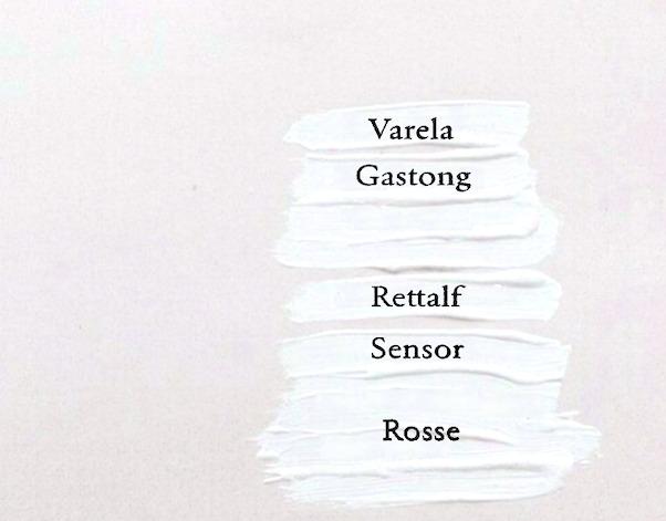「ヴァレラ・ガストン・センサー・レトルフ・ロッセ」グループのラウンジが人気の理由を解説